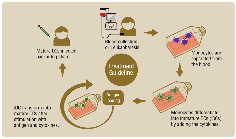 รักษามะเร็ง ด้วย WT1 Cancer Vaccine Treatment Guideline