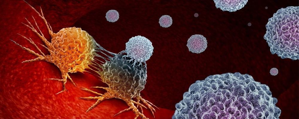 immunotherapy cell