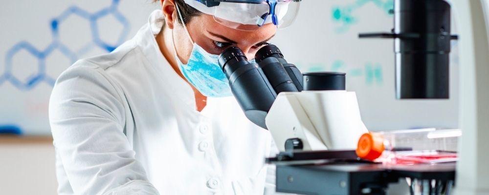 การตรวจนับ สเต็มเซลล์ stem cell count 1